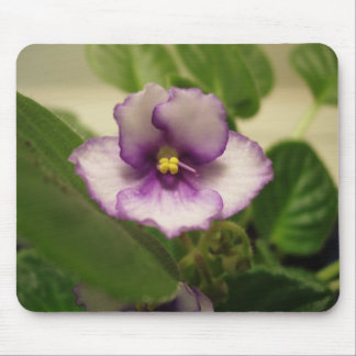 Beautiful Day Lily Mouse Mat Mouse Pad