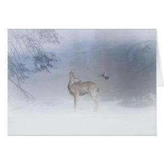 Beautiful Deer and Jay Christmas Card