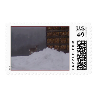 Beautiful Deer On The Farm-Silo-Stamps Postage