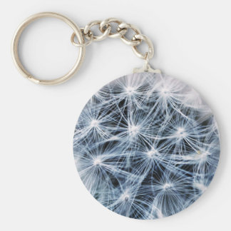 beautiful delicate dandelion flower photograph keychain