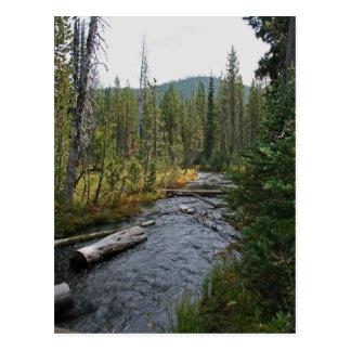 Beautiful Deschutes River Oregon Postcard
