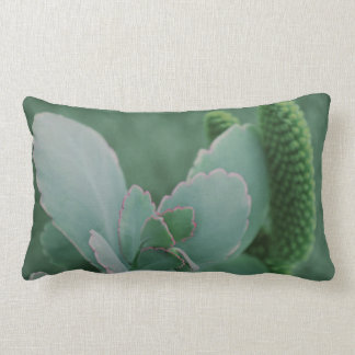 Beautiful Desert Plant Art Photograph Lumbar Pillow