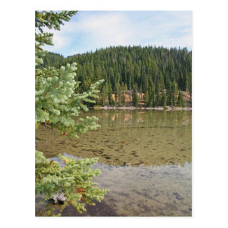 Beautiful Devils Lake Oregon Postcard