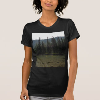 Beautiful Devils Lake Oregon T-Shirt