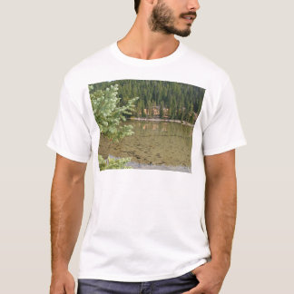 Beautiful Devils Lake Oregon T-Shirt