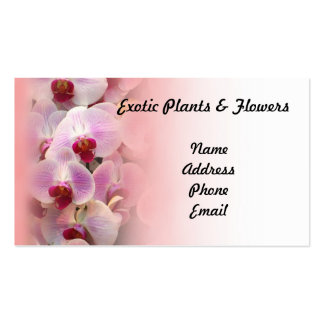 Beautiful Display of Butterfly Orchids Business Card