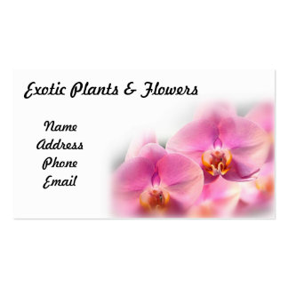 Beautiful Display of Pink Butterfly Orchids Business Card