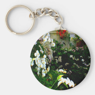 Beautiful display or exotic orchids growing key chains