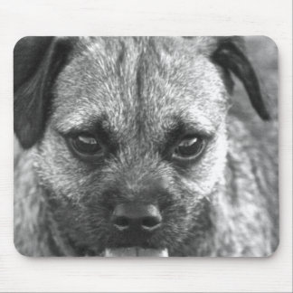 Beautiful Dog Face Black and White Mouse Pad
