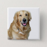 Beautiful Dog Golden Retriever and Your Bone Button