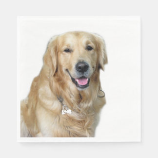 Beautiful Dog Golden Retriever and Your Bone Napkin