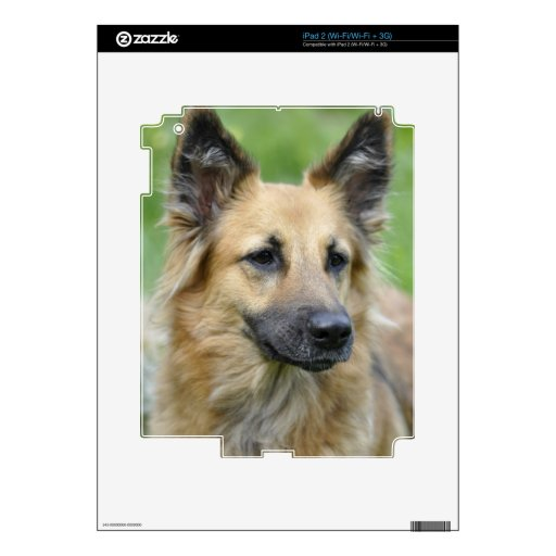 Beautiful Dog iPad 2 Skin