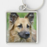 Beautiful Dog Keychain