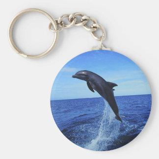 Beautiful Dolphin Keychain
