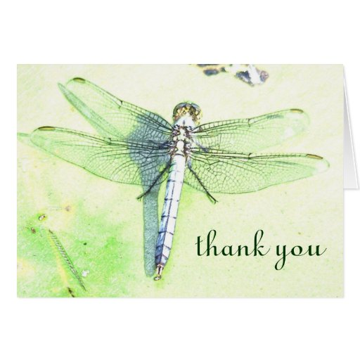 Beautiful Thank You Cards Extraordinary Of Beautiful Thank You Card Picture