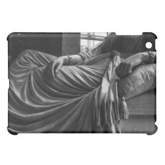 Beautiful Drape iPad Mini Case