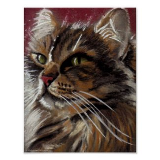 Beautiful Dreamer - Maine Coon Cat Poster