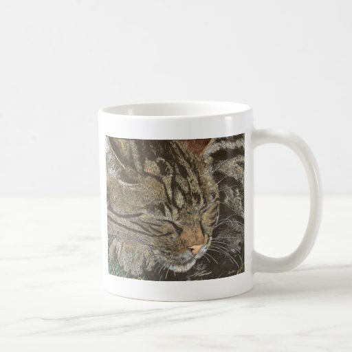Beautiful Dreamer (sleeping tabby) Mugs