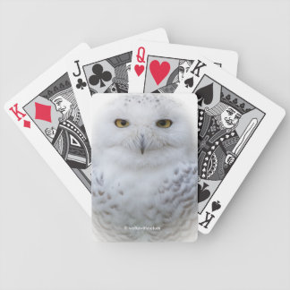Beautiful, Dreamy and Serene Snowy Owl Bicycle Playing Cards