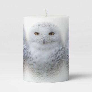 Beautiful, Dreamy and Serene Snowy Owl Pillar Candle