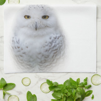 Beautiful, Dreamy and Serene Snowy Owl Towel