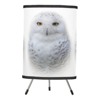 Beautiful, Dreamy and Serene Snowy Owl Tripod Lamp