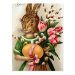 Beautiful Dressed Easter Bunny Lady Postcard