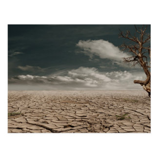 Beautiful drought desert scenery postcard