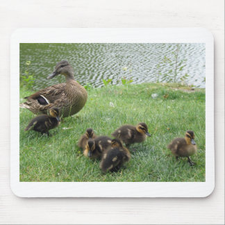 BEAUTIFUL DUCK FAMILY MOUSE PAD
