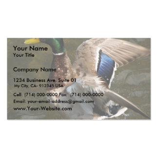 Beautiful Duck Going To Fly In The Pound Double-Sided Standard Business Cards (Pack Of 100)