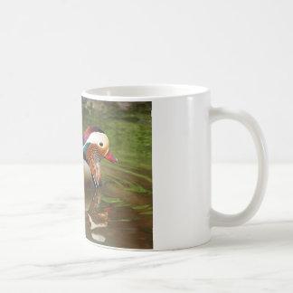 Beautiful Duck Swimming in Pond Coffee Mug