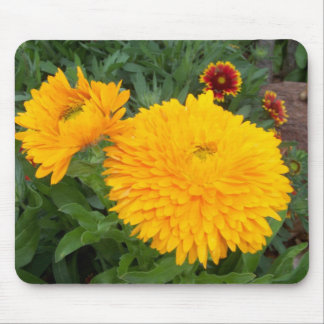 beautiful-duo mouse pad