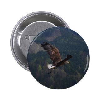 Beautiful eagle in flight pins