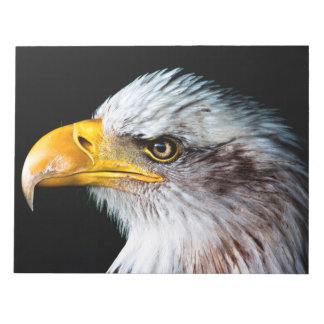 Beautiful eagle side portrait notepad