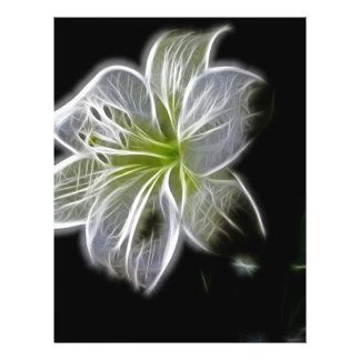 "Beautiful Electric White Lily 8.5"" X 11"" Flyer"
