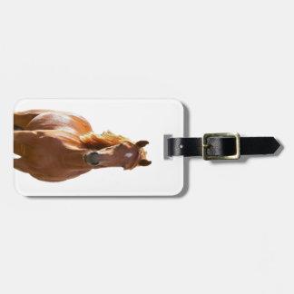 Beautiful Elegant Brown Horse Bag Tag