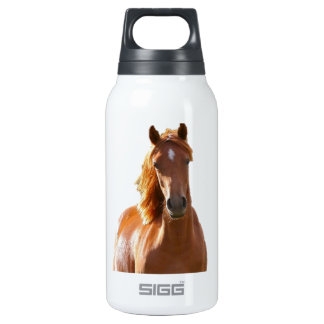 Beautiful Elegant Brown Horse Thermos Water Bottle
