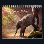 """Beautiful Elephant Photographs Calendar<br><div class=""""desc"""">This calendar has a mix of Asian and African elephants all beautifully  photographed in the wild.</div>"""