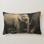 Beautiful Elephant Pillow