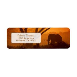 Beautiful Elephant Silhouette during Sunset Label