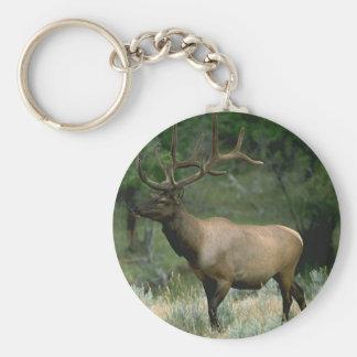 Beautiful Elk Basic Round Button Keychain