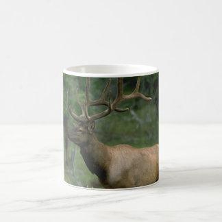 Beautiful Elk Classic White Coffee Mug