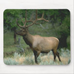Beautiful Elk Mousepads
