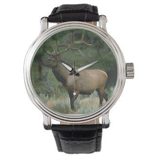Beautiful Elk Wrist Watches
