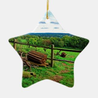 Beautiful English Countryside Ceramic Star Decoration