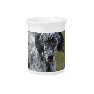 Beautiful English Setter Dog Beverage Pitcher