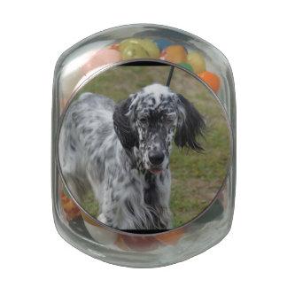 Beautiful English Setter Dog Glass Candy Jars