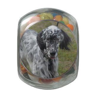 Beautiful English Setter Dog Glass Jar