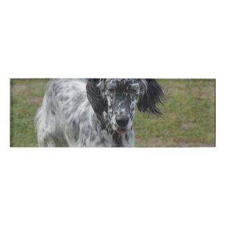 Beautiful English Setter Dog Name Tag