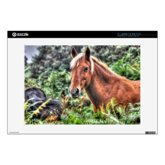 Beautiful Equines Horse-lover's Gift Decals For Laptops